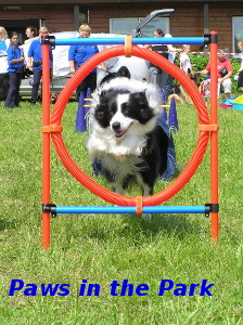 Paws in the Park, Sunday 11th June 2017